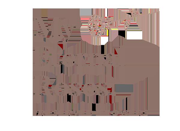 My Eternal Roses